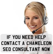 Contact an SEO Consultant